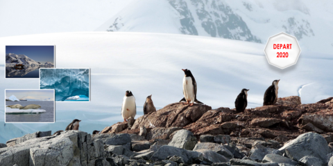 Antarctique 2020, voyage d'une vie