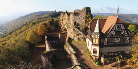 Alsace pittoresque et gourmande 2019