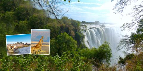 Afrique australe, safaris inédits !