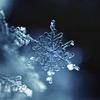 Sports d'hiver et Science !