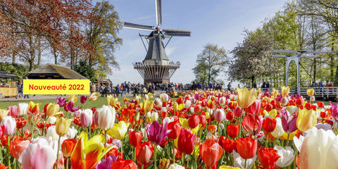 Jardins en fête, une croisière évènement aux Pays-Bas