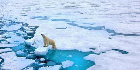 Incroyable arctique 2022, du Spitzberg à l'Islande